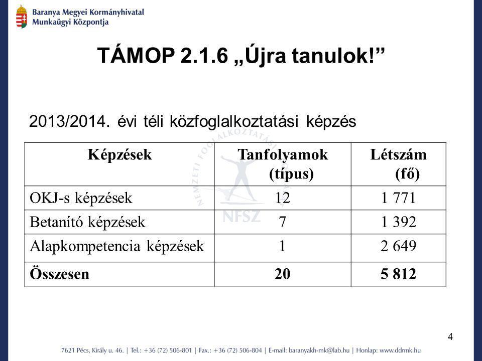 """TÁMOP 2.1.6 """"Újra tanulok! 2013/2014. évi téli közfoglalkoztatási képzés. Képzések. Tanfolyamok (típus)"""