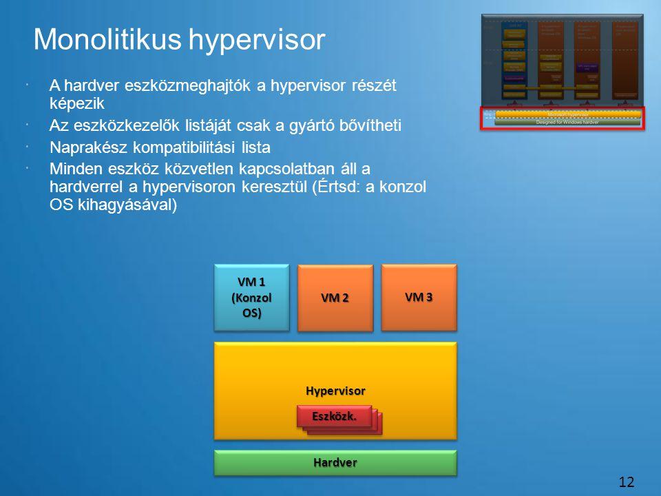 Monolitikus hypervisor