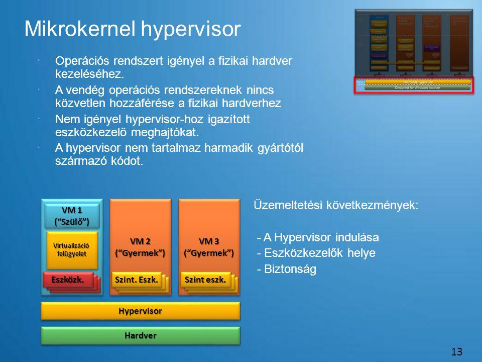 Mikrokernel hypervisor