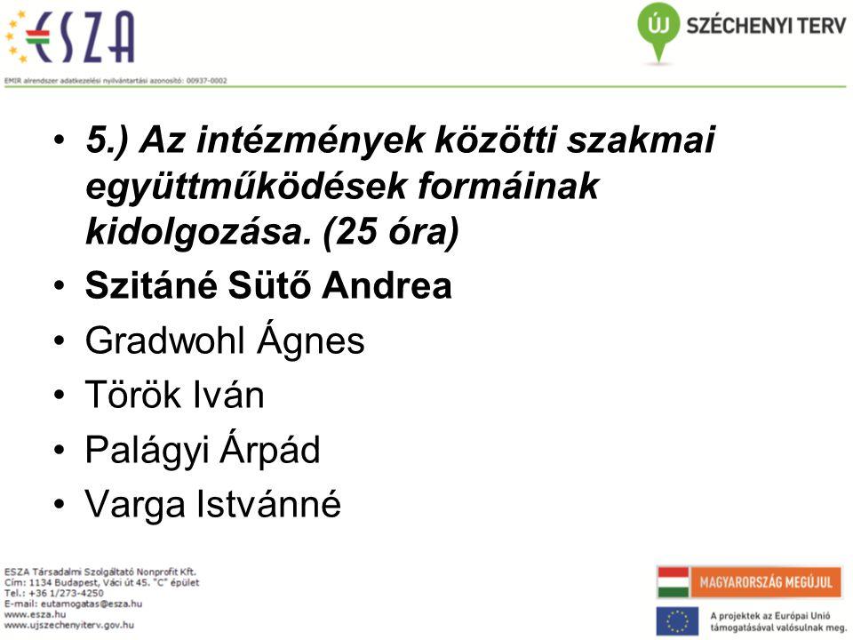 5.) Az intézmények közötti szakmai együttműködések formáinak kidolgozása. (25 óra)