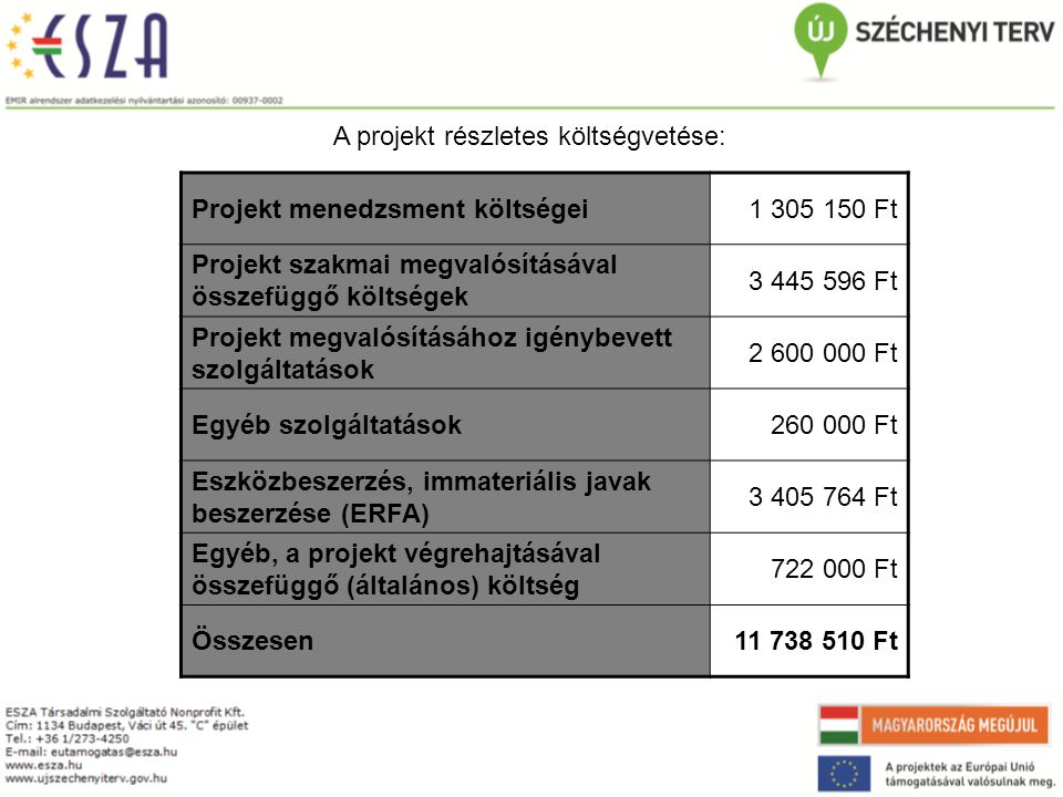 A projekt részletes költségvetése: