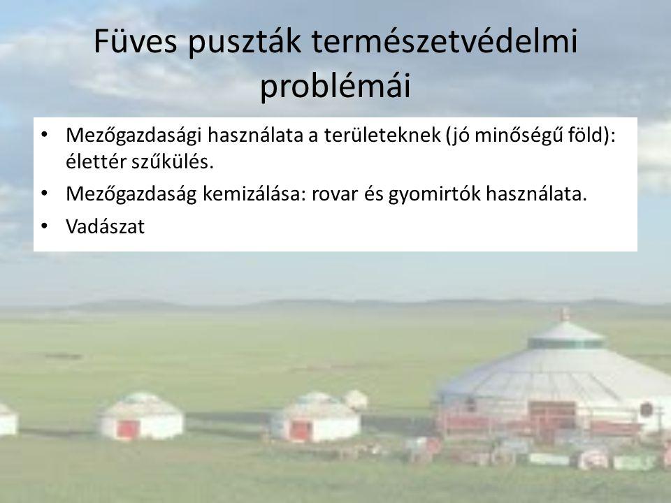 Füves puszták természetvédelmi problémái