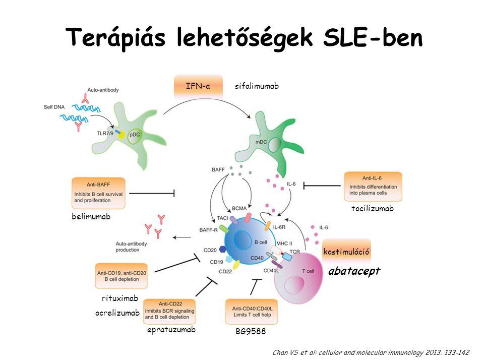 Terápiás lehetőségek SLE-ben