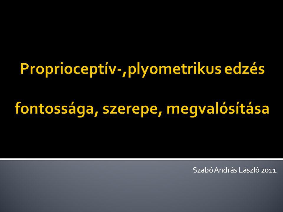 Proprioceptív-,plyometrikus edzés fontossága, szerepe, megvalósítása