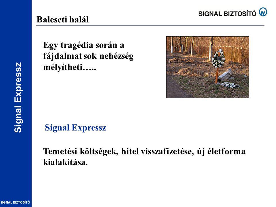 Baleseti halál Egy tragédia során a fájdalmat sok nehézség mélyítheti….. Signal Expressz.