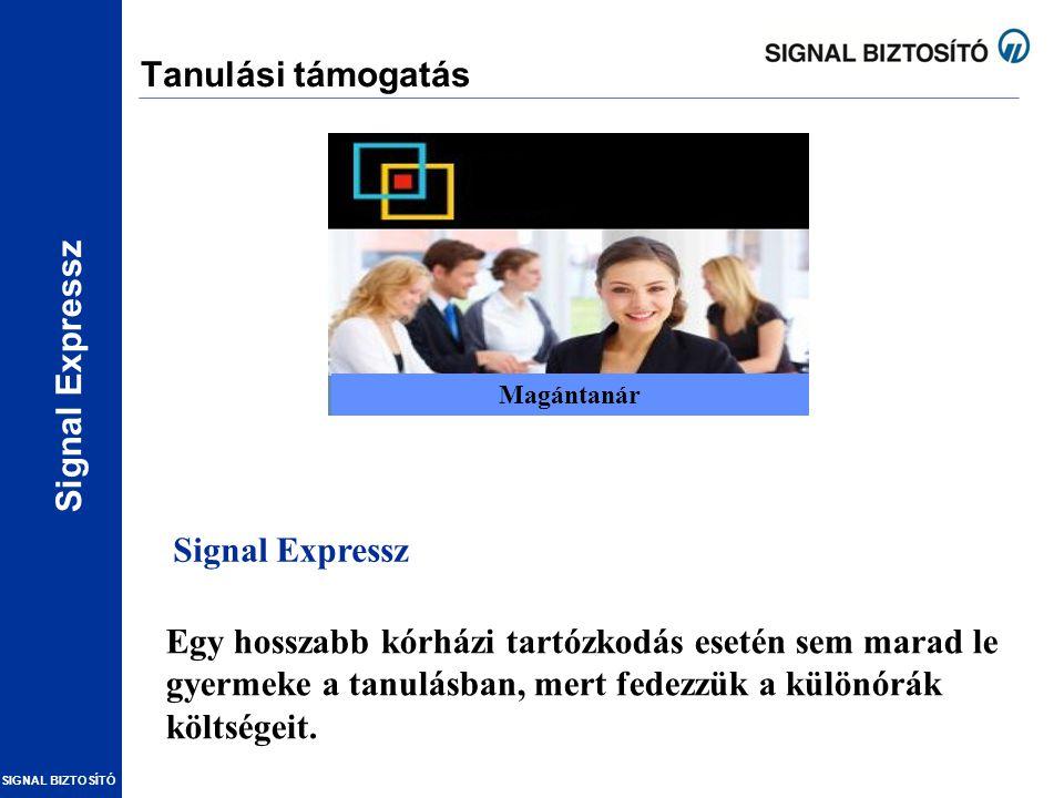 Tanulási támogatás Oktatás Signal Expressz