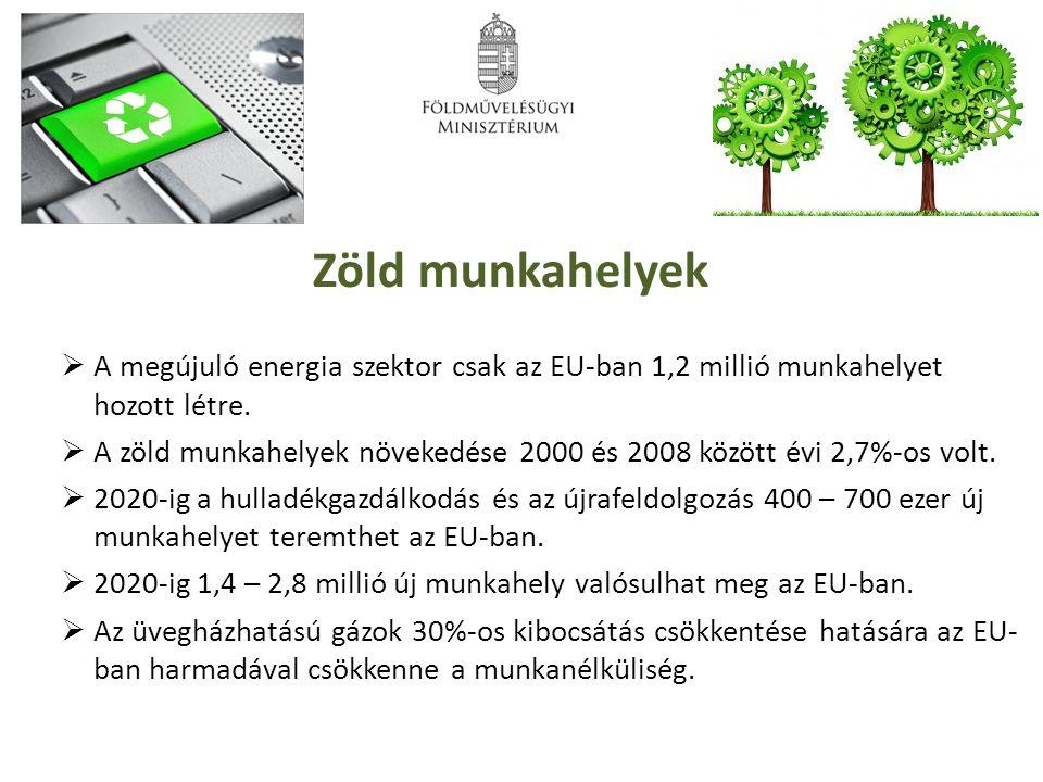 Zöld munkahelyek A megújuló energia szektor csak az EU-ban 1,2 millió munkahelyet hozott létre.