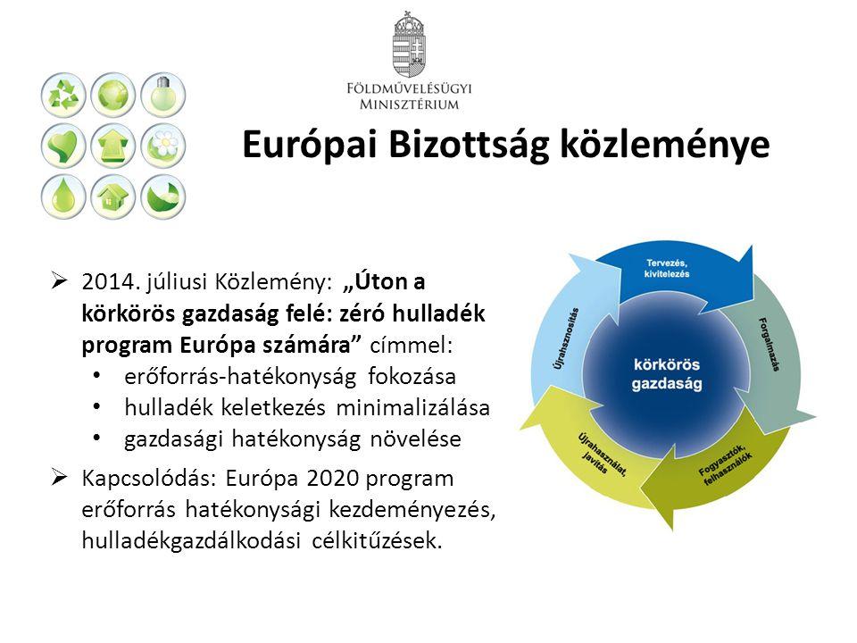 Európai Bizottság közleménye