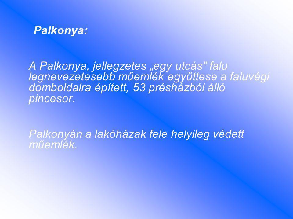 """Palkonya: A Palkonya, jellegzetes """"egy utcás falu legnevezetesebb műemlék együttese a faluvégi domboldalra épített, 53 présházból álló pincesor."""