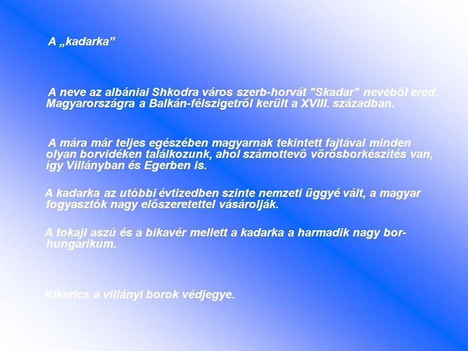"""A """"kadarka A neve az albániai Shkodra város szerb-horvát Skadar nevéből ered. Magyarországra a Balkán-félszigetről került a XVIII. században."""