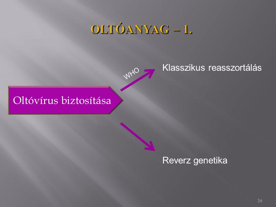 Oltóvírus biztosítása
