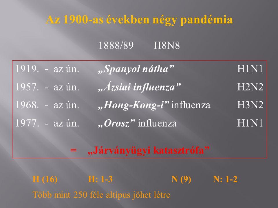 Az 1900-as években négy pandémia