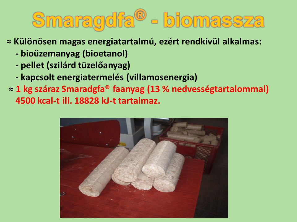 Smaragdfa® - biomassza