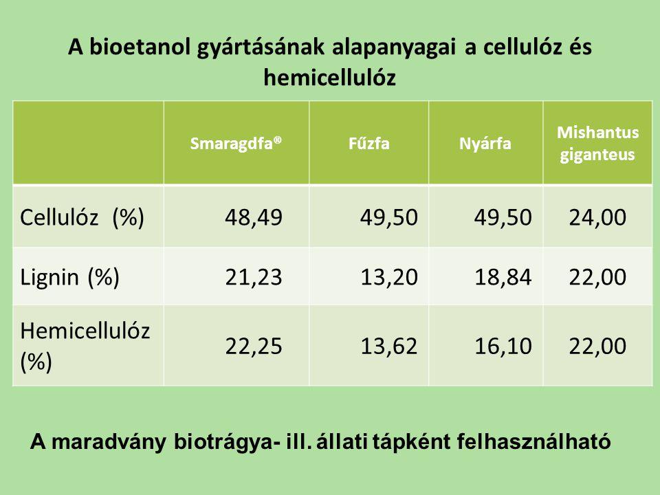 A bioetanol gyártásának alapanyagai a cellulóz és hemicellulóz