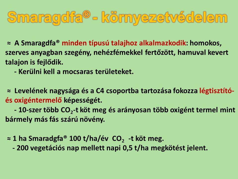 Smaragdfa® - környezetvédelem