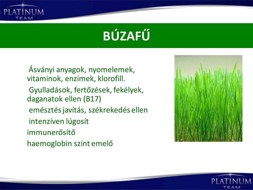 BÚZAFŰ Gyulladások, fertőzések, fekélyek, daganatok ellen (B17)