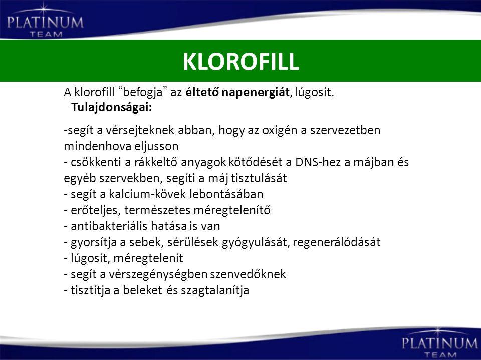 KLOROFILL A klorofill befogja az éltető napenergiát, lúgosit.