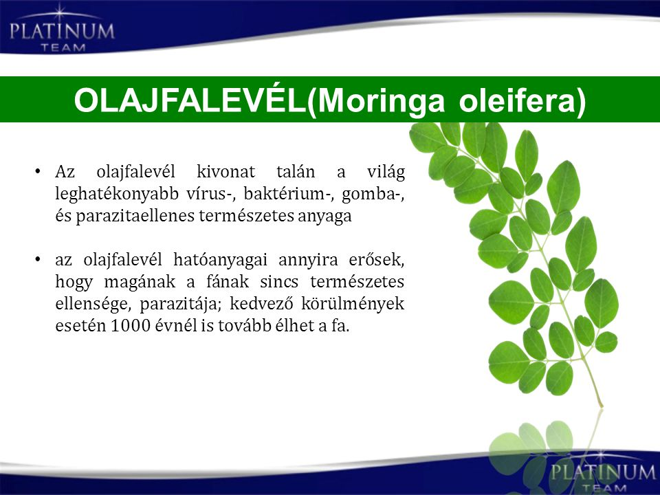 OLAJFALEVÉL(Moringa oleifera)