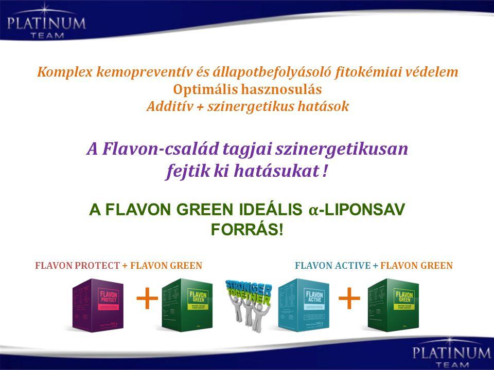 + + A Flavon-család tagjai szinergetikusan fejtik ki hatásukat !