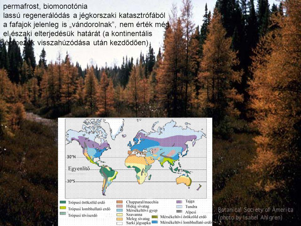 permafrost, biomonotónia