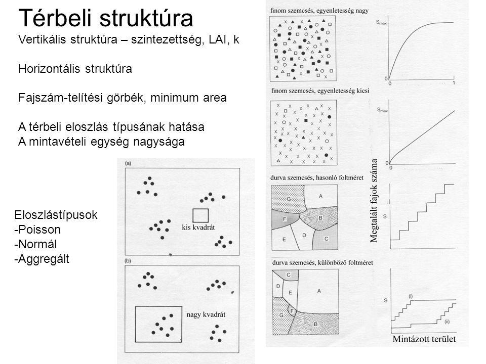 Térbeli struktúra Vertikális struktúra – szintezettség, LAI, k