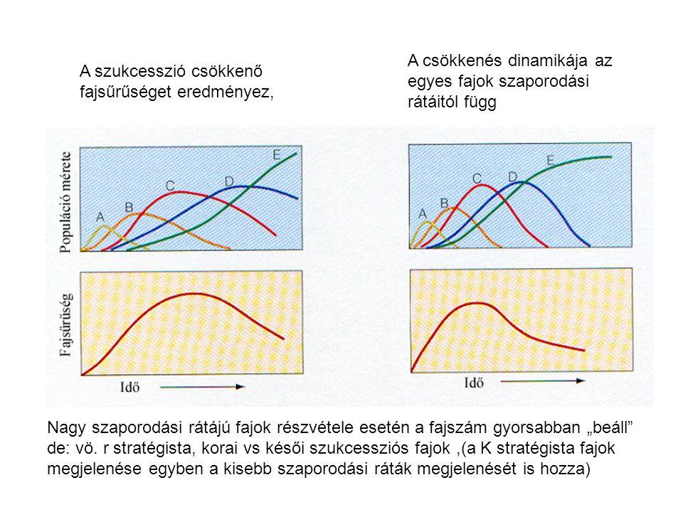 A csökkenés dinamikája az egyes fajok szaporodási rátáitól függ