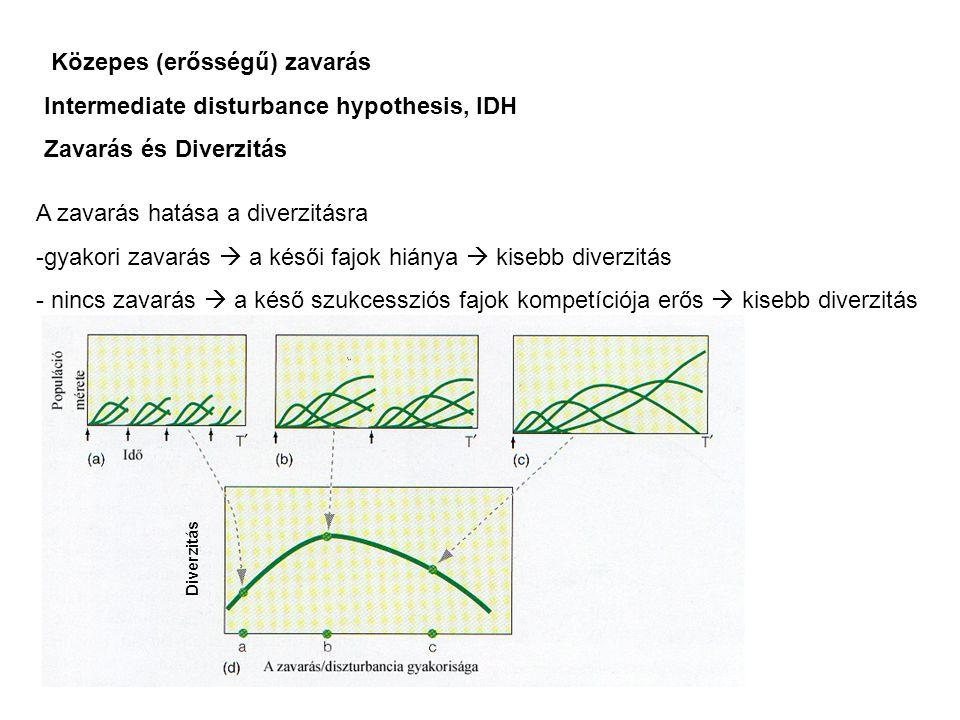 Közepes (erősségű) zavarás Intermediate disturbance hypothesis, IDH