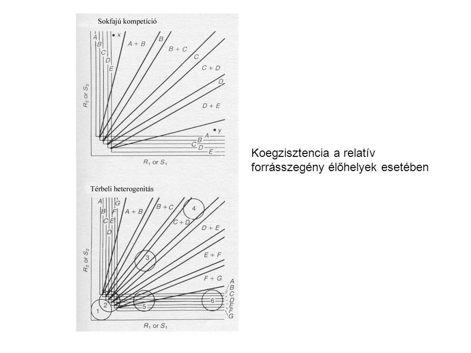 Koegzisztencia a relatív forrásszegény élőhelyek esetében