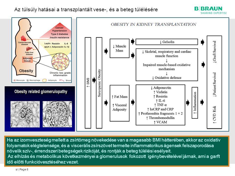 Az túlsúly hatásai a transzplantált vese-, és a beteg túlélésére