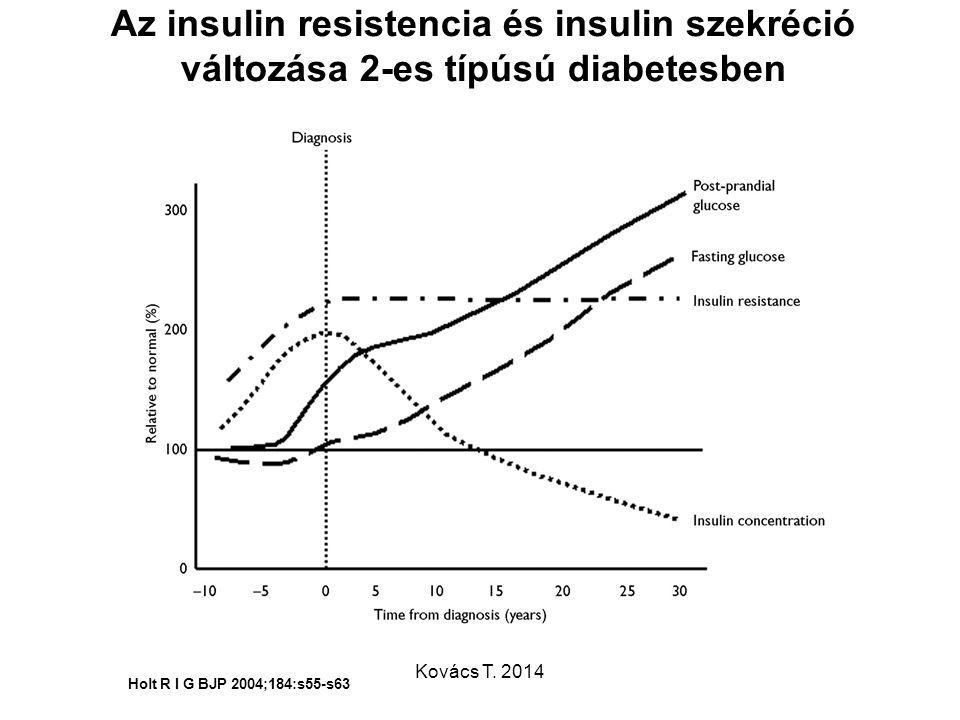 Az insulin resistencia és insulin szekréció változása 2-es típúsú diabetesben