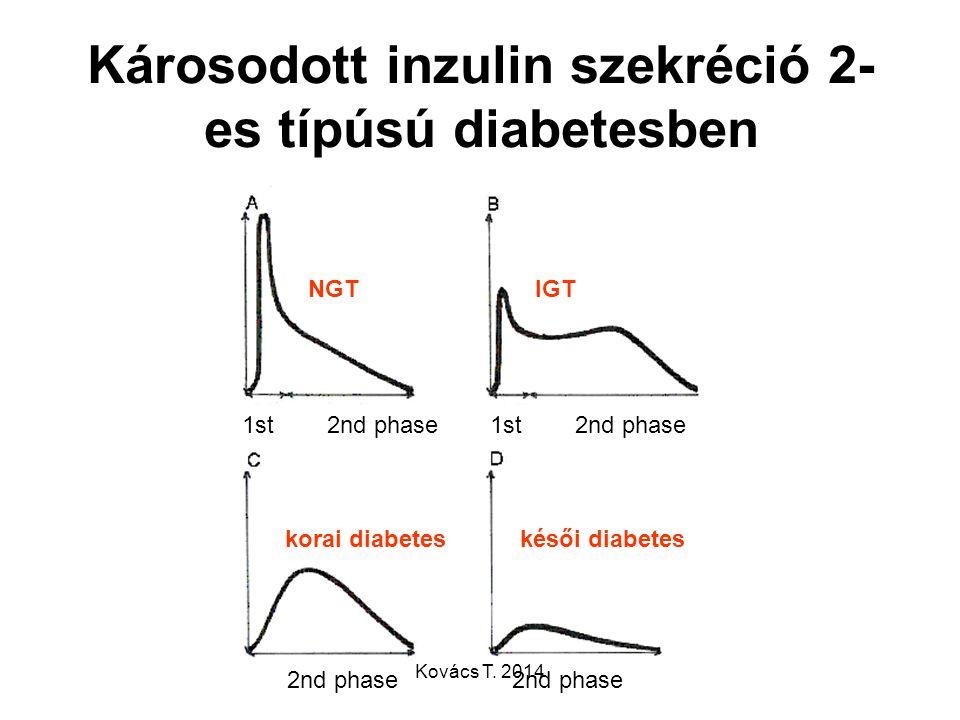 Károsodott inzulin szekréció 2-es típúsú diabetesben