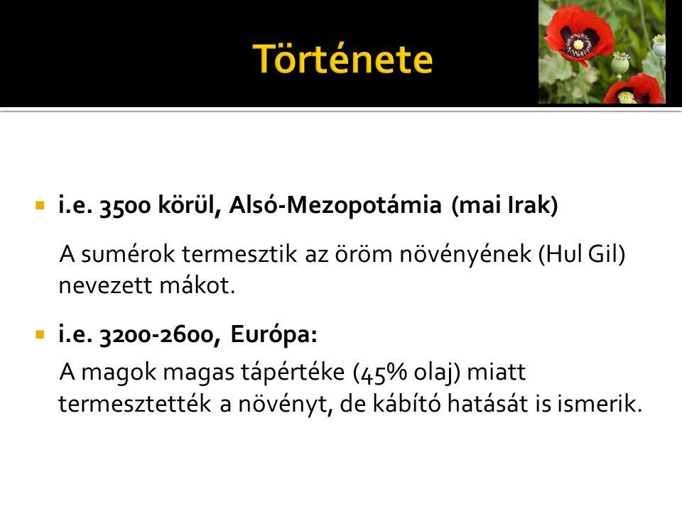 Története i.e. 3500 körül, Alsó-Mezopotámia (mai Irak)