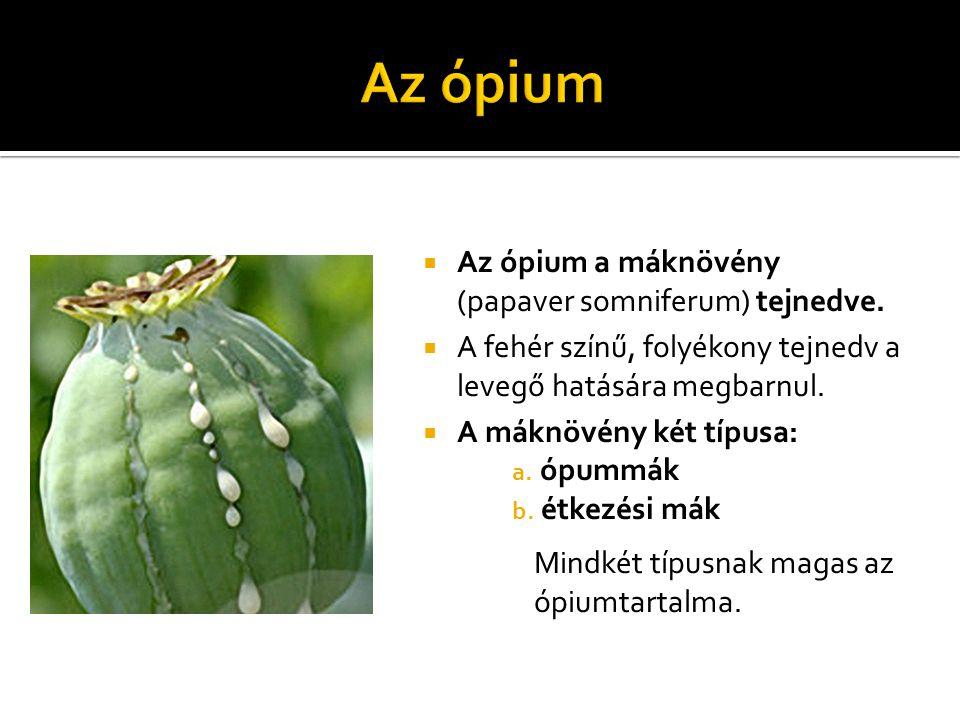 Az ópium Az ópium a máknövény (papaver somniferum) tejnedve.