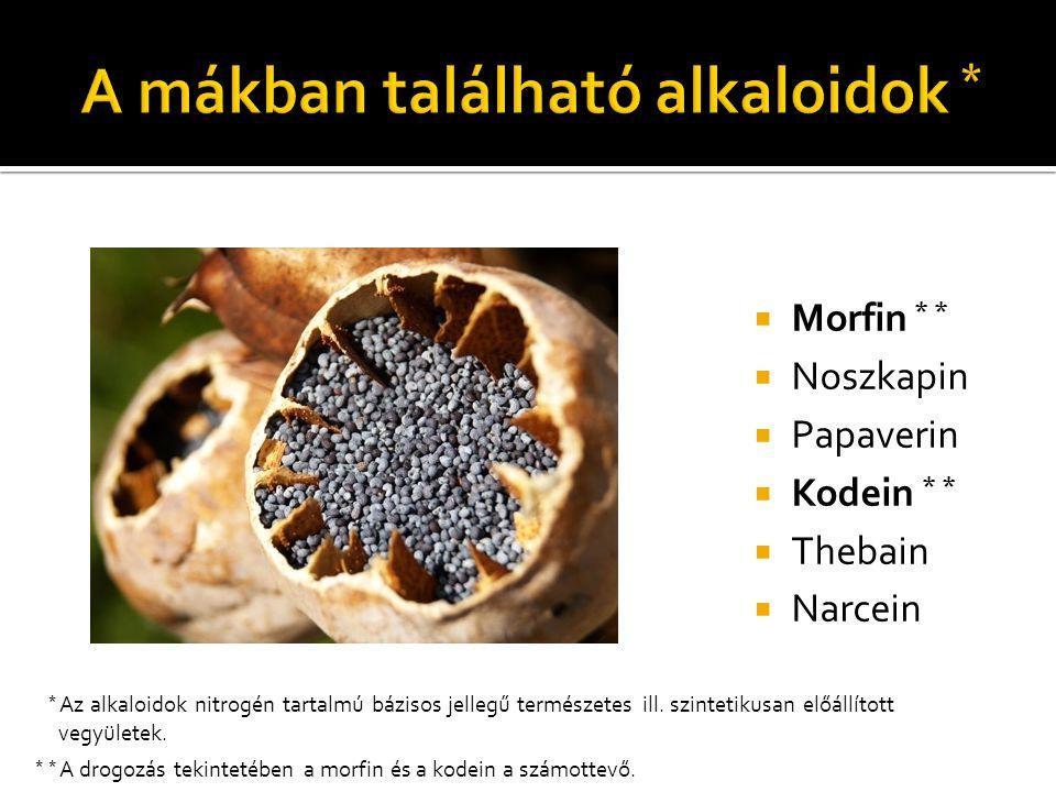 A mákban található alkaloidok *
