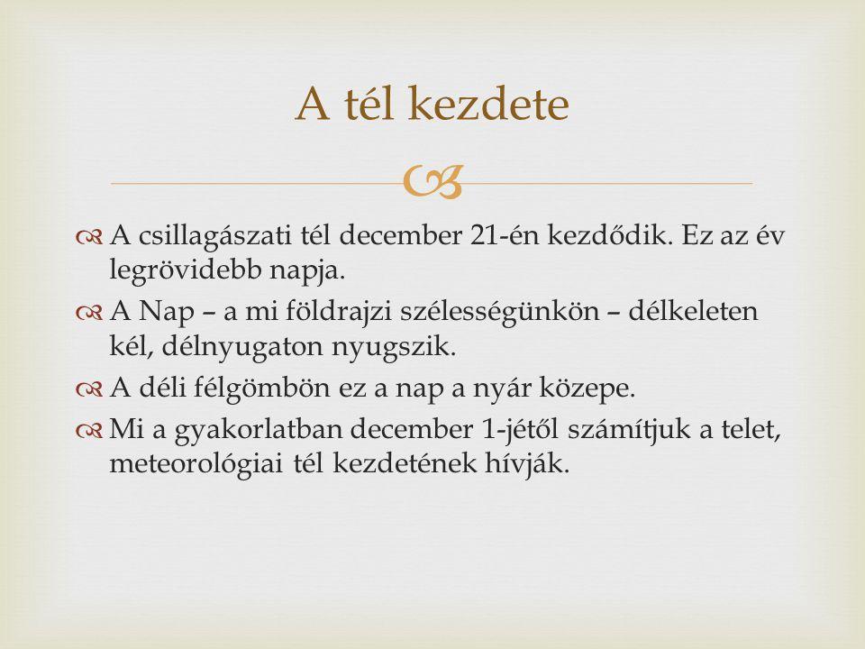 A tél kezdete A csillagászati tél december 21-én kezdődik. Ez az év legrövidebb napja.