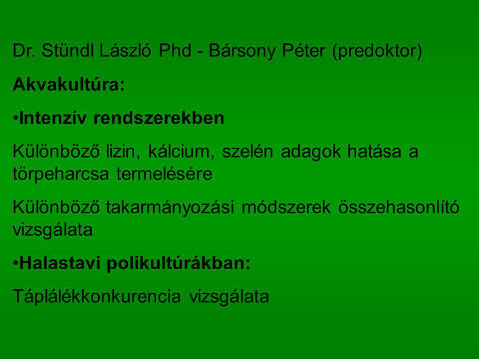 Dr. Stündl László Phd - Bársony Péter (predoktor)