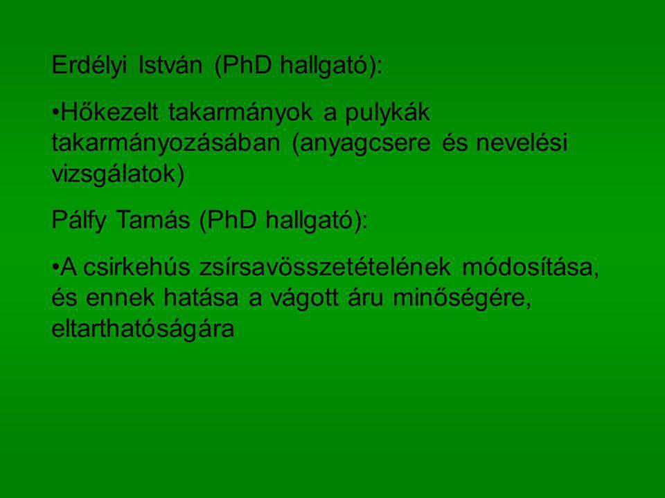 Erdélyi István (PhD hallgató):