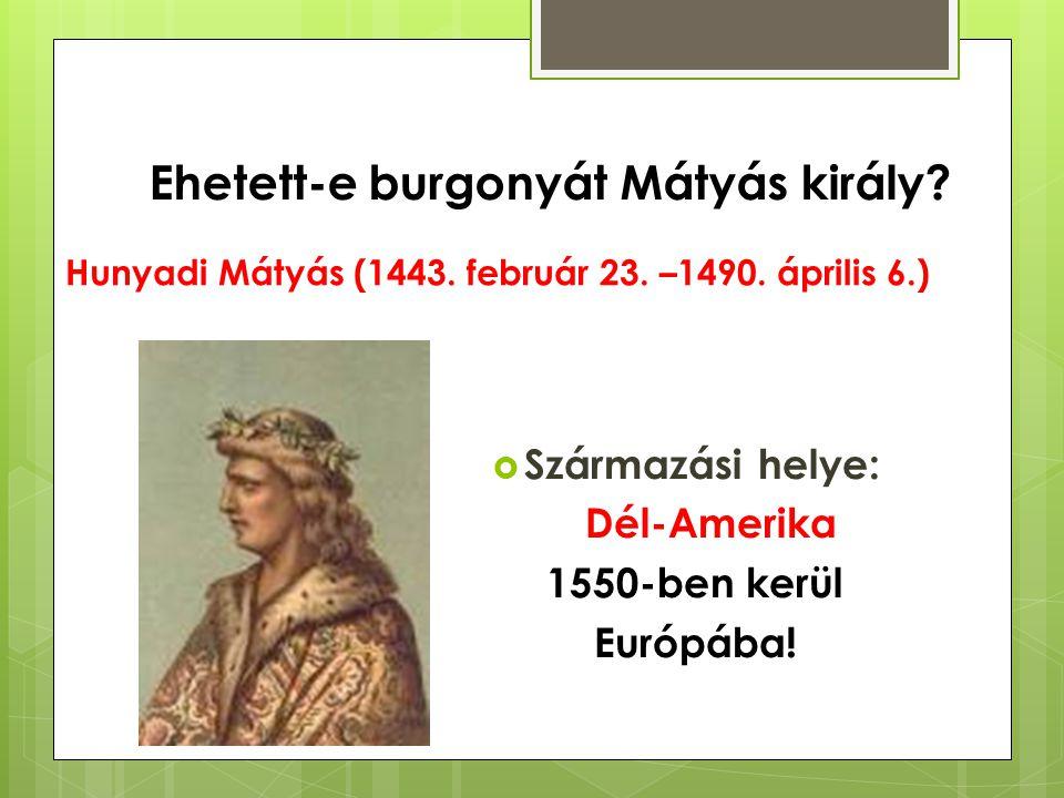 Hunyadi Mátyás (1443. február 23. –1490. április 6.)