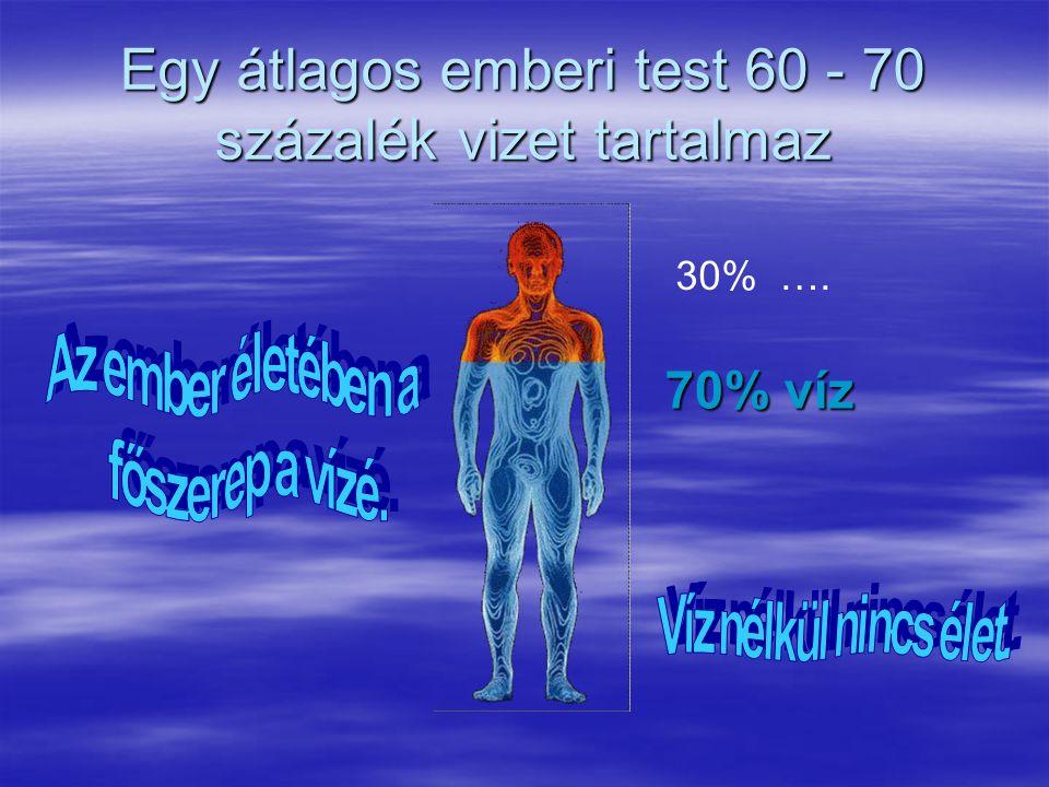 Egy átlagos emberi test 60 - 70 százalék vizet tartalmaz