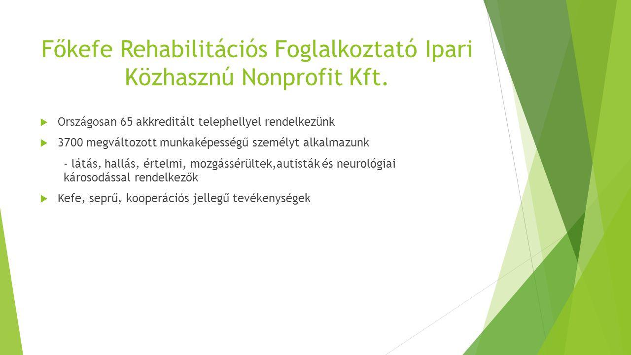 Főkefe Rehabilitációs Foglalkoztató Ipari Közhasznú Nonprofit Kft.