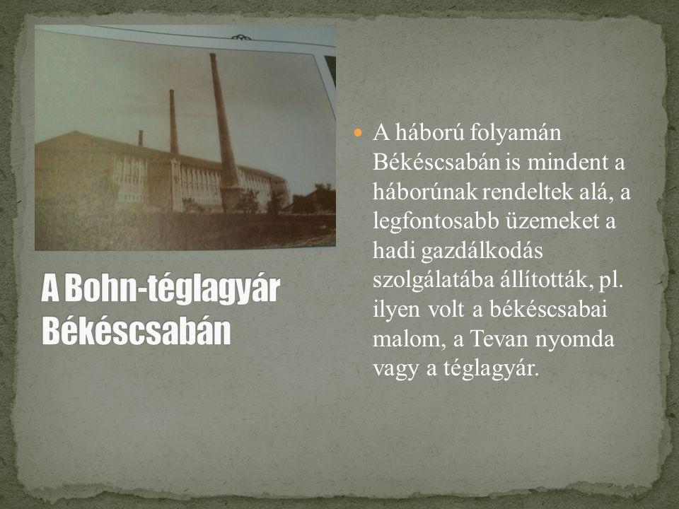 A Bohn-téglagyár Békéscsabán