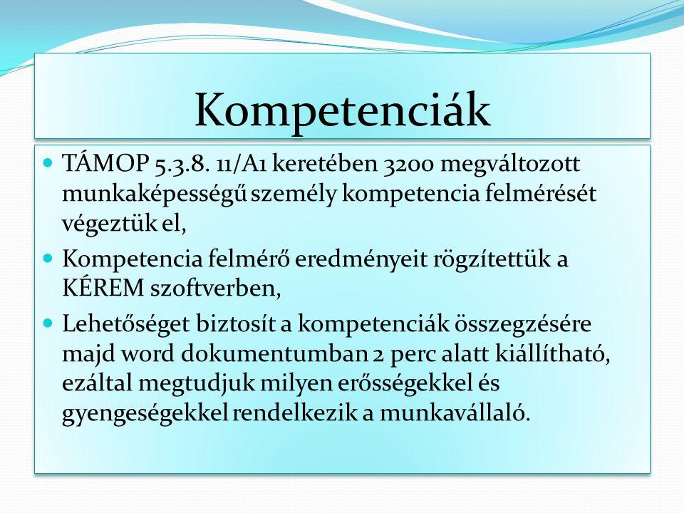 Kompetenciák TÁMOP 5.3.8. 11/A1 keretében 3200 megváltozott munkaképességű személy kompetencia felmérését végeztük el,