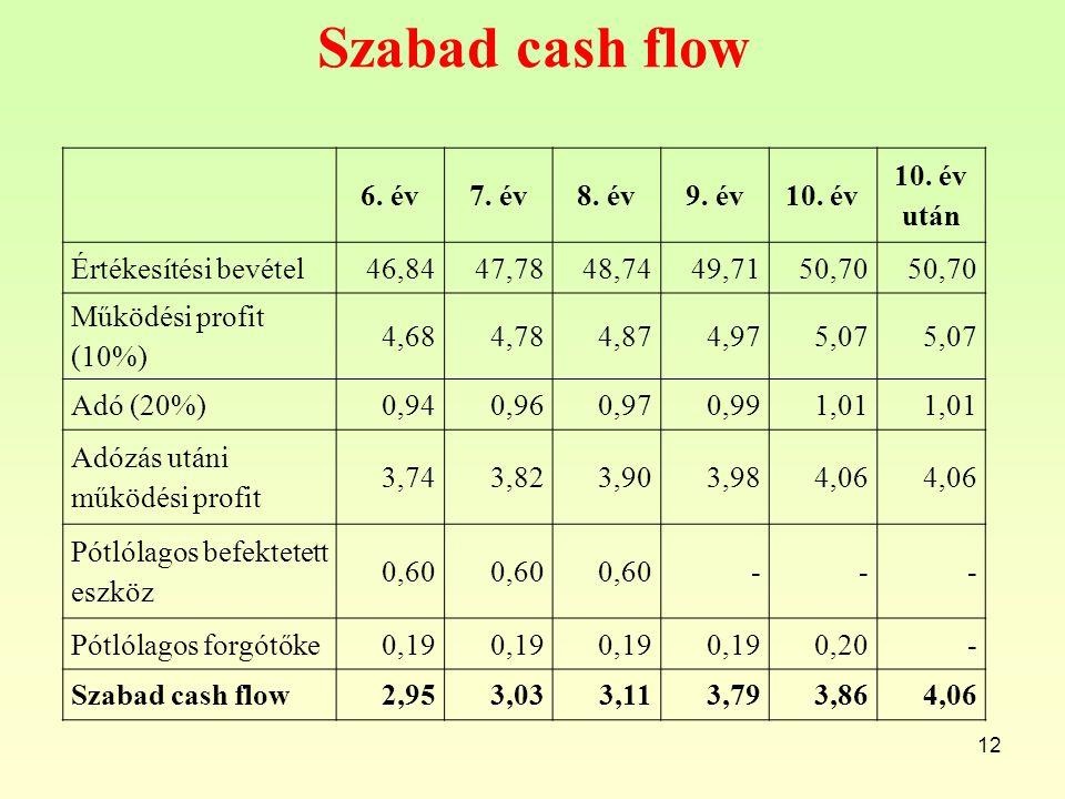 Szabad cash flow 6. év 7. év 8. év 9. év 10. év 10. év után
