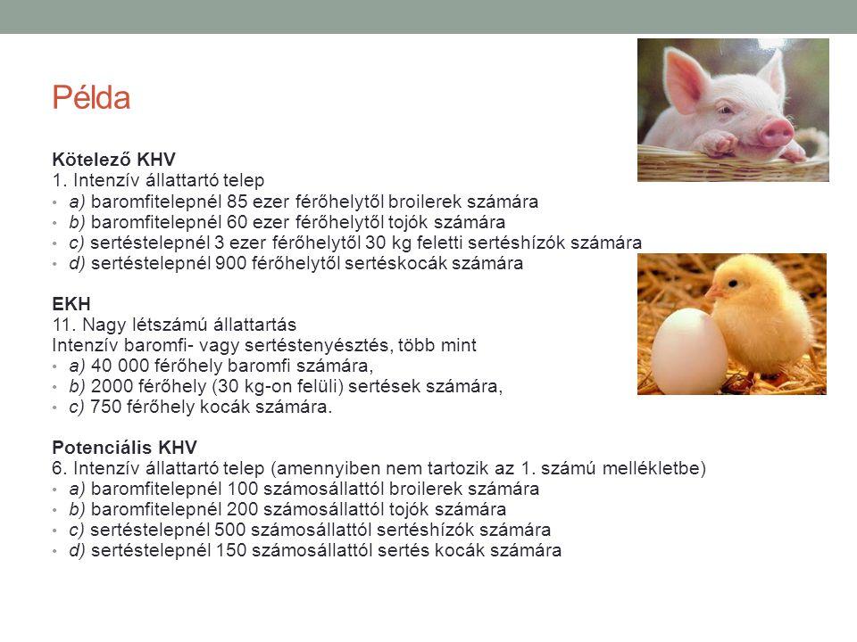 Példa Kötelező KHV 1. Intenzív állattartó telep