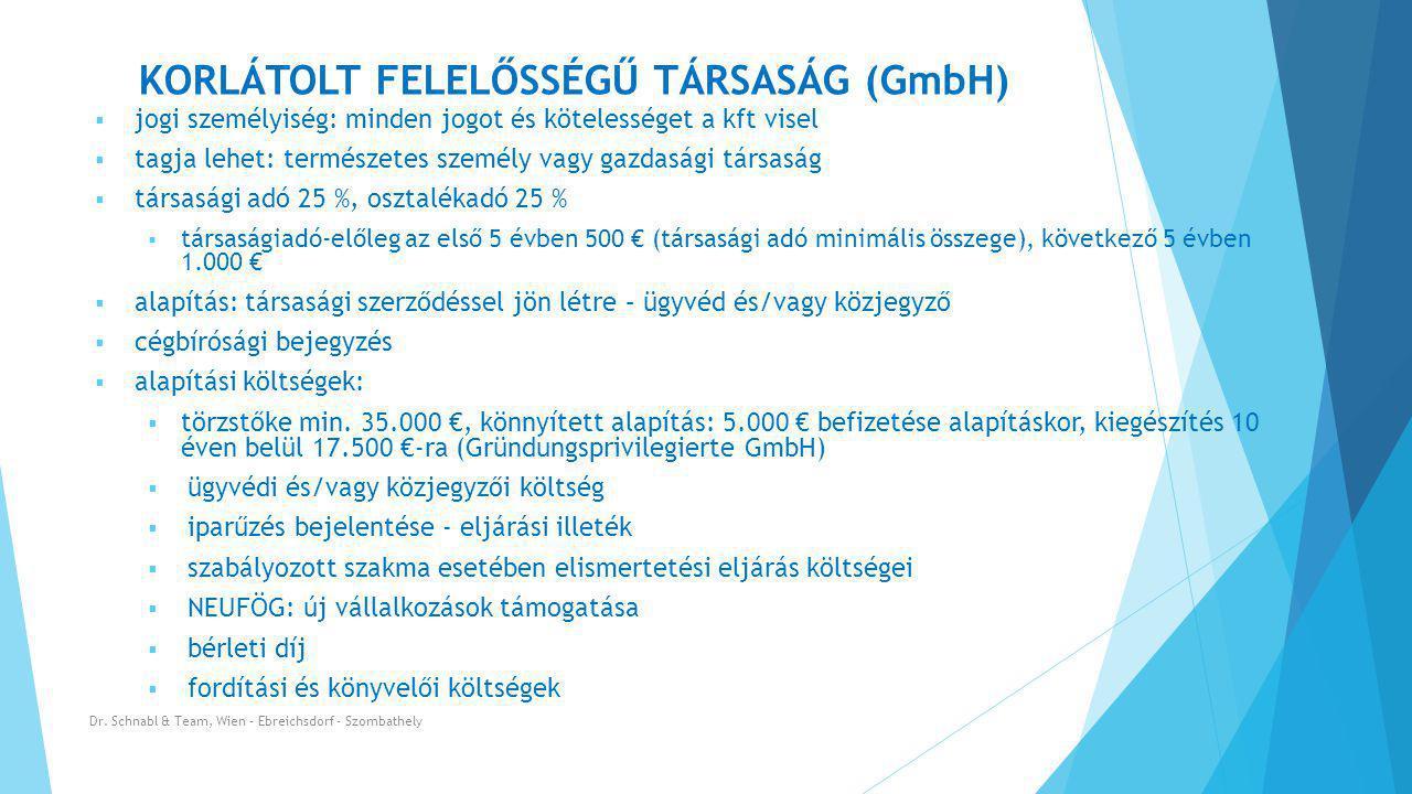 KORLÁTOLT FELELŐSSÉGŰ TÁRSASÁG (GmbH)