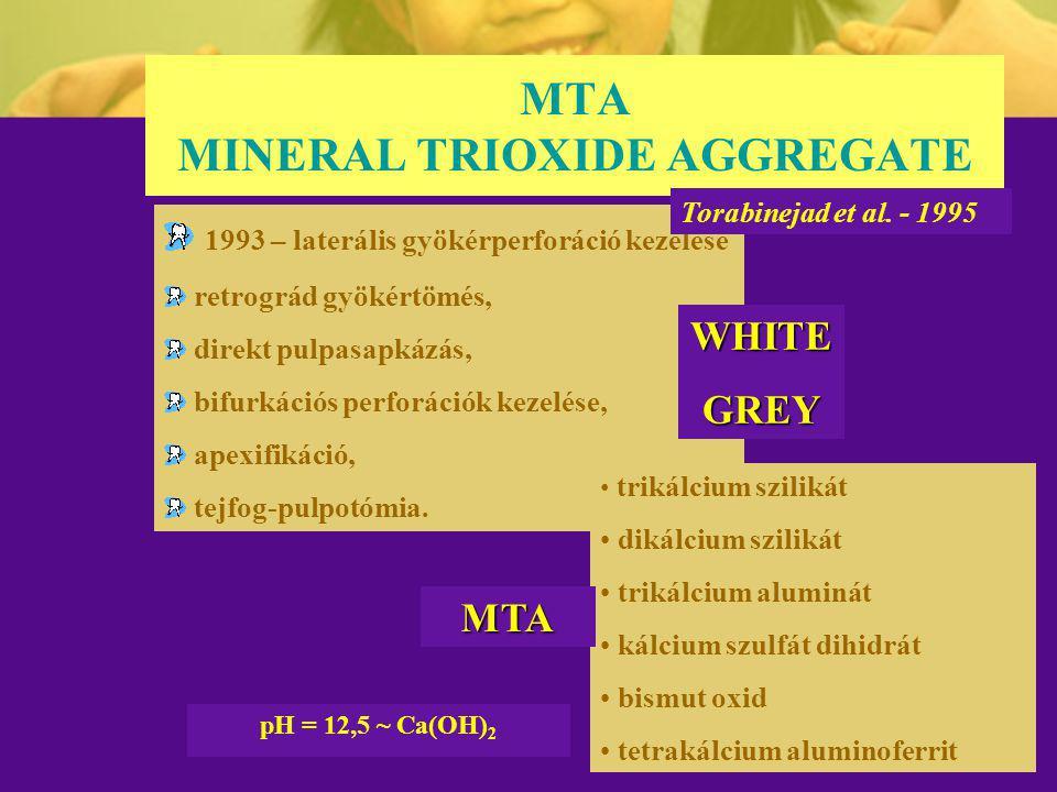 MTA MINERAL TRIOXIDE AGGREGATE