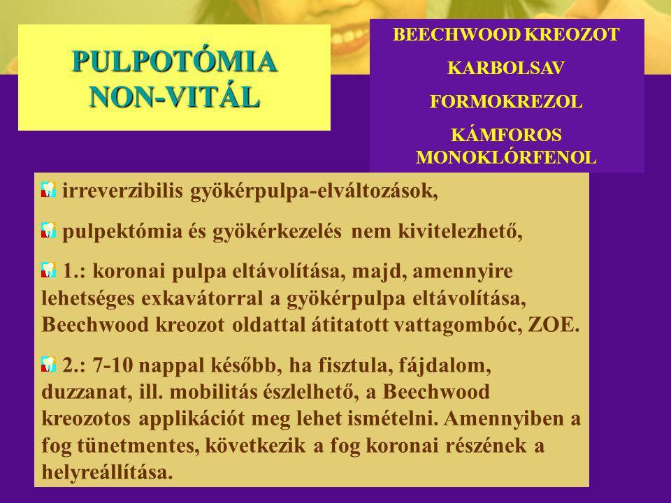 KÁMFOROS MONOKLÓRFENOL