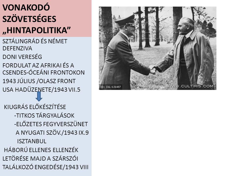 """VONAKODÓ SZÖVETSÉGES """"HINTAPOLITIKA"""