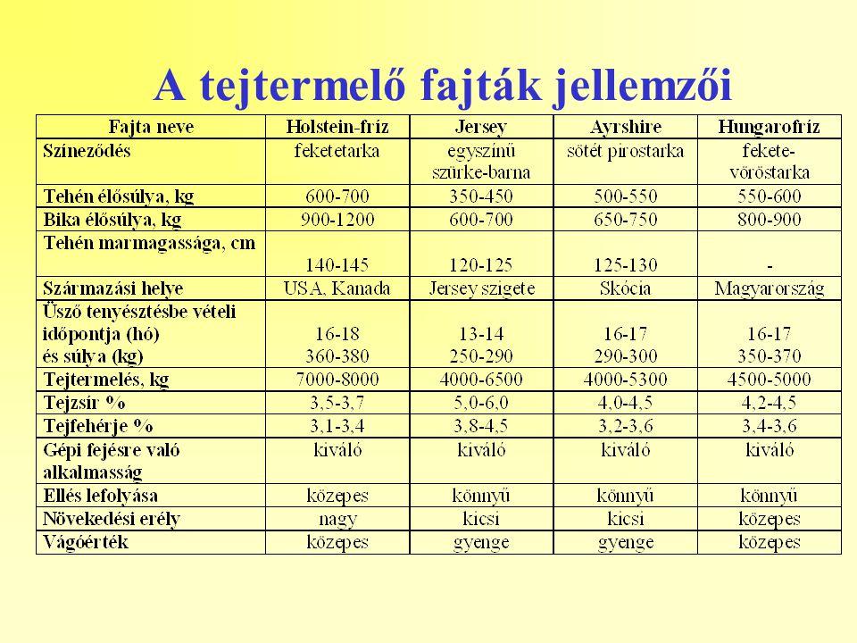 A tejtermelő fajták jellemzői