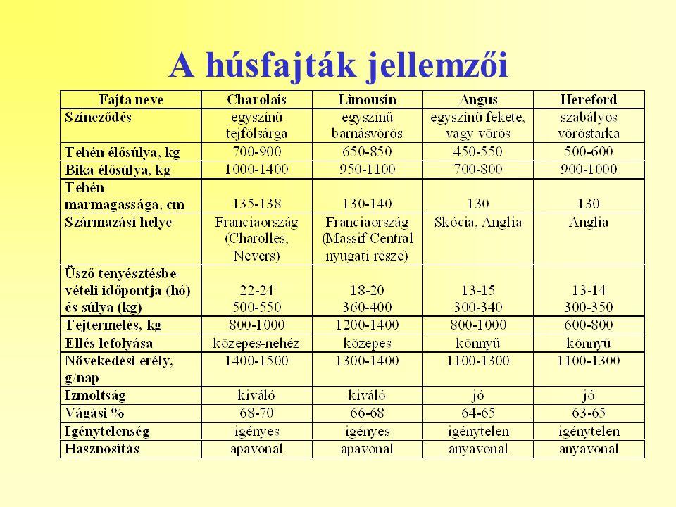 A húsfajták jellemzői